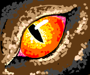 Dragon eye closeup