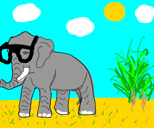 Nearsighted elephant