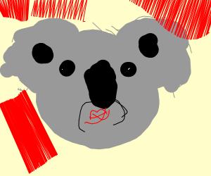 Mindless Koala