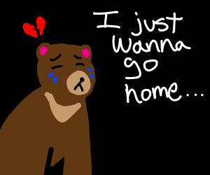 crying bear wants to go home and is