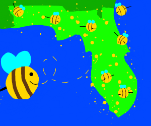 bees are attacking one state in particular