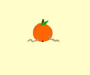 Two worms eating an orange