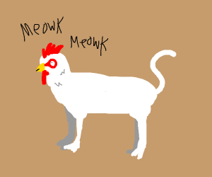 Cat's body with a chicken's head