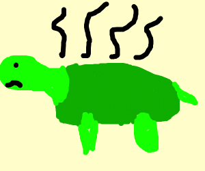 smelly nasty turtle