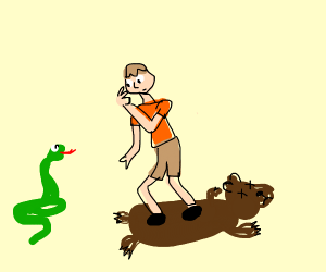 person watching a snake vs a bear rug