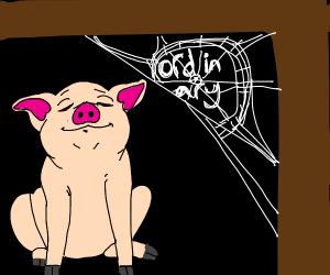 An ordinary pig