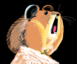 Screaming marmot