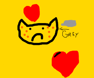 Grey cat loves you