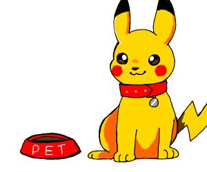 Pet Pokemon