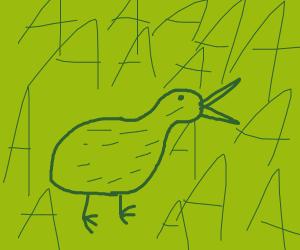 screaming kiwi bird