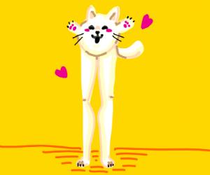 Leggy cat loves you