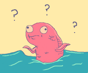 Pink Fish has a lot of unanswered questions