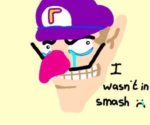 Waluigi crys. He wasn't in Smash.