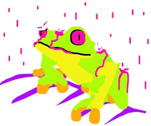 Acid rain dissolves a frog