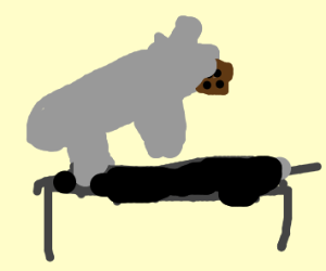 Rhino on a trampoline holding cookie