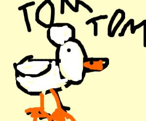 chicken is named tom tom