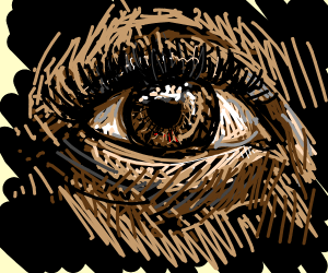 Closeup of an eye on a black background