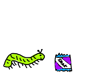 Insect thankful for purple snacks