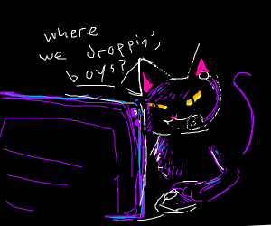 black cat plays fortnite