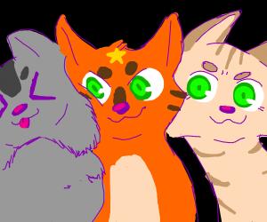 Firestar the Cat