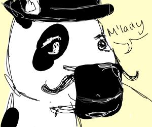 A cow gentleman