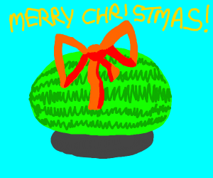 Watermelon Christmas gift