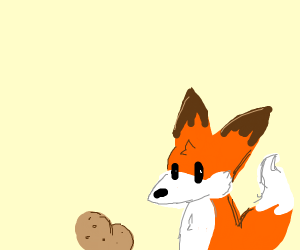 Fox next to a potato