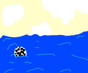 A Soccer Ball crossing the Ocean