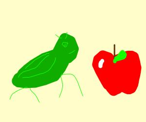 Grasshopper spots an apple