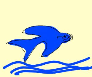 Flyingfish Secretary