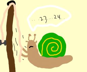 snail lifting a dumbbell