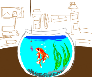 fishing in a fish bowl