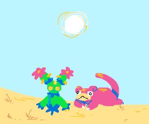 slopoke and maractus sad in desert