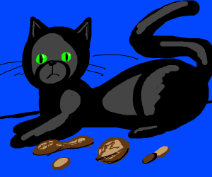 Cat with nuts
