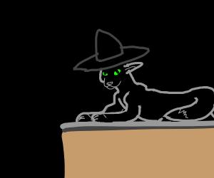 Prof McGonagall teaches in cat form