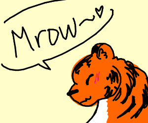 A tiger saying mrow