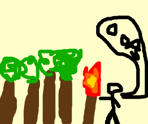 Step 13: Accidentally burn down the forest