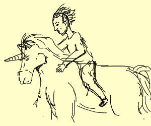 rider on an unicorn