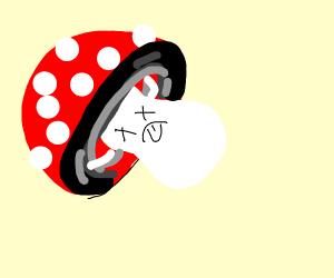 a mushroom that died