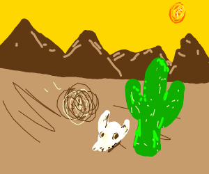 Tumbleweed in the desert