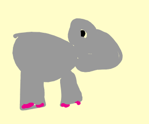 Old School Hippo