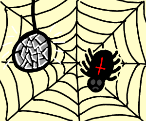 lonely spider in disco web