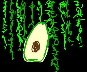 Avocado in the Matrix