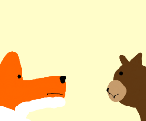 fox and bear have a staring contest