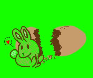 Egg Cracked Open Revealing a Bunny