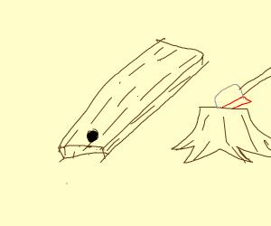 a plank