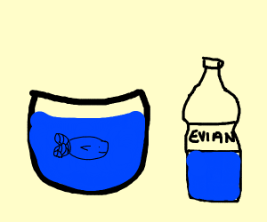Goldfish only drinks Evian