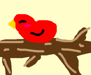 Red Bird on a branch