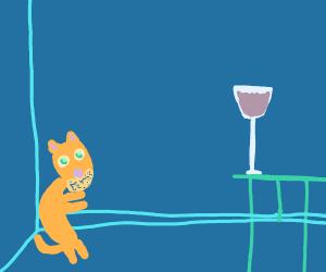 Cat spots glass of wine