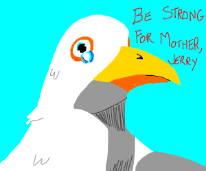 Jerry the Seagull Must Stay Strong for Mama